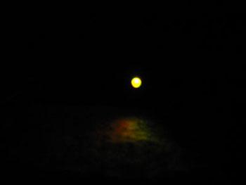 ニューボルト ライト2